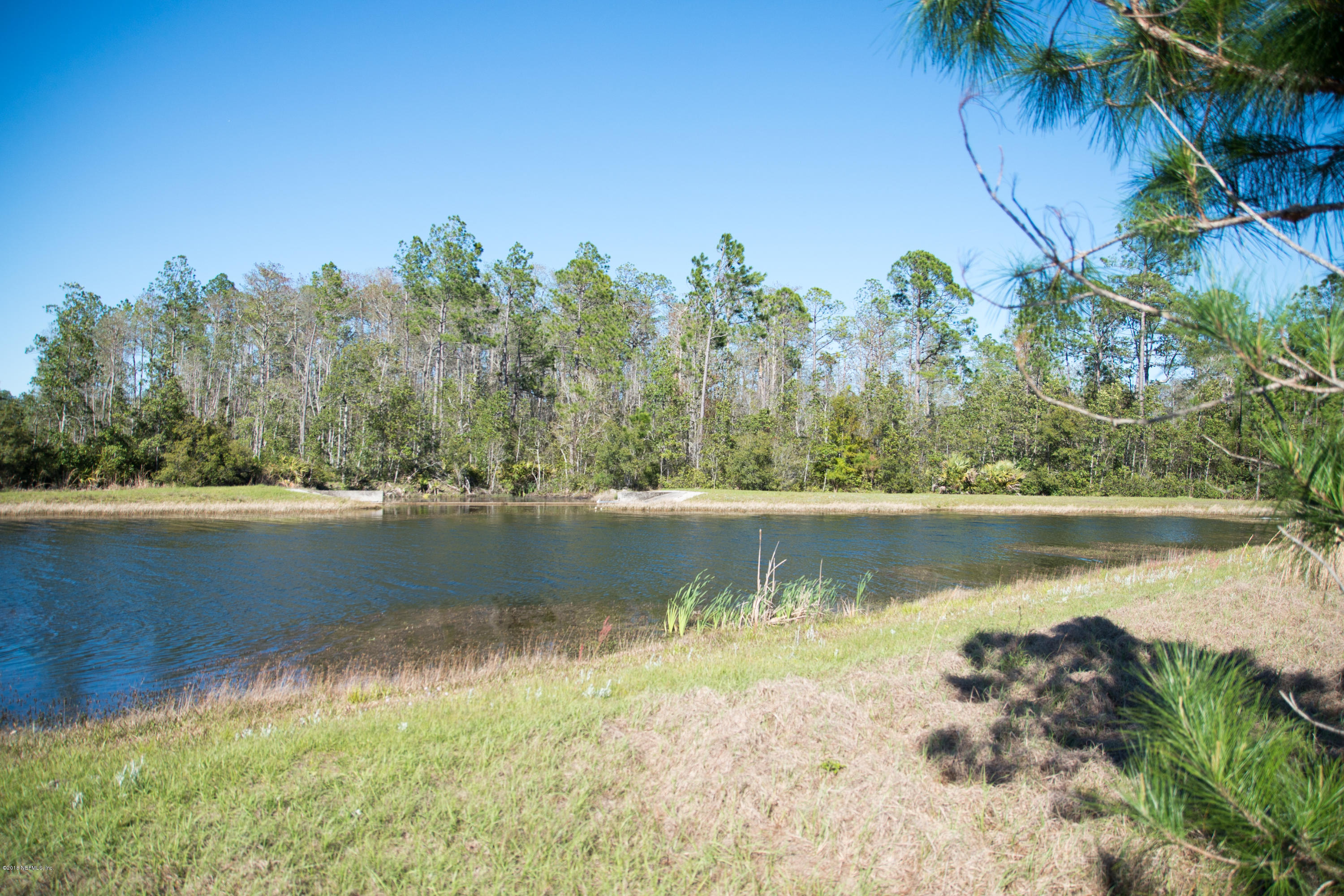 11206 SADDLE CLUB, JACKSONVILLE, FLORIDA 32219, ,Vacant land,For sale,SADDLE CLUB,927271
