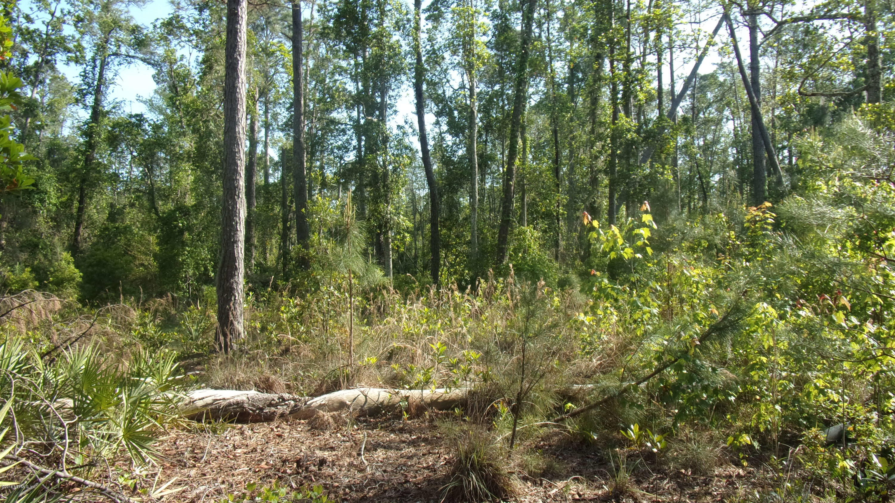 223 EAST END, SAN MATEO, FLORIDA 32187, ,Vacant land,For sale,EAST END,927544
