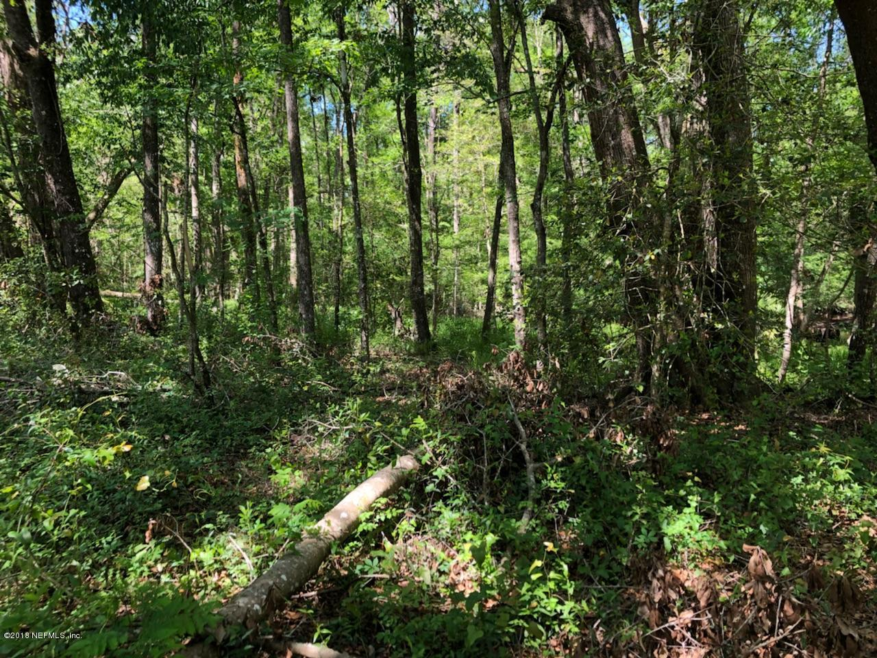 0000 92ND, BROOKER, FLORIDA 32622, ,Vacant land,For sale,92ND,929715