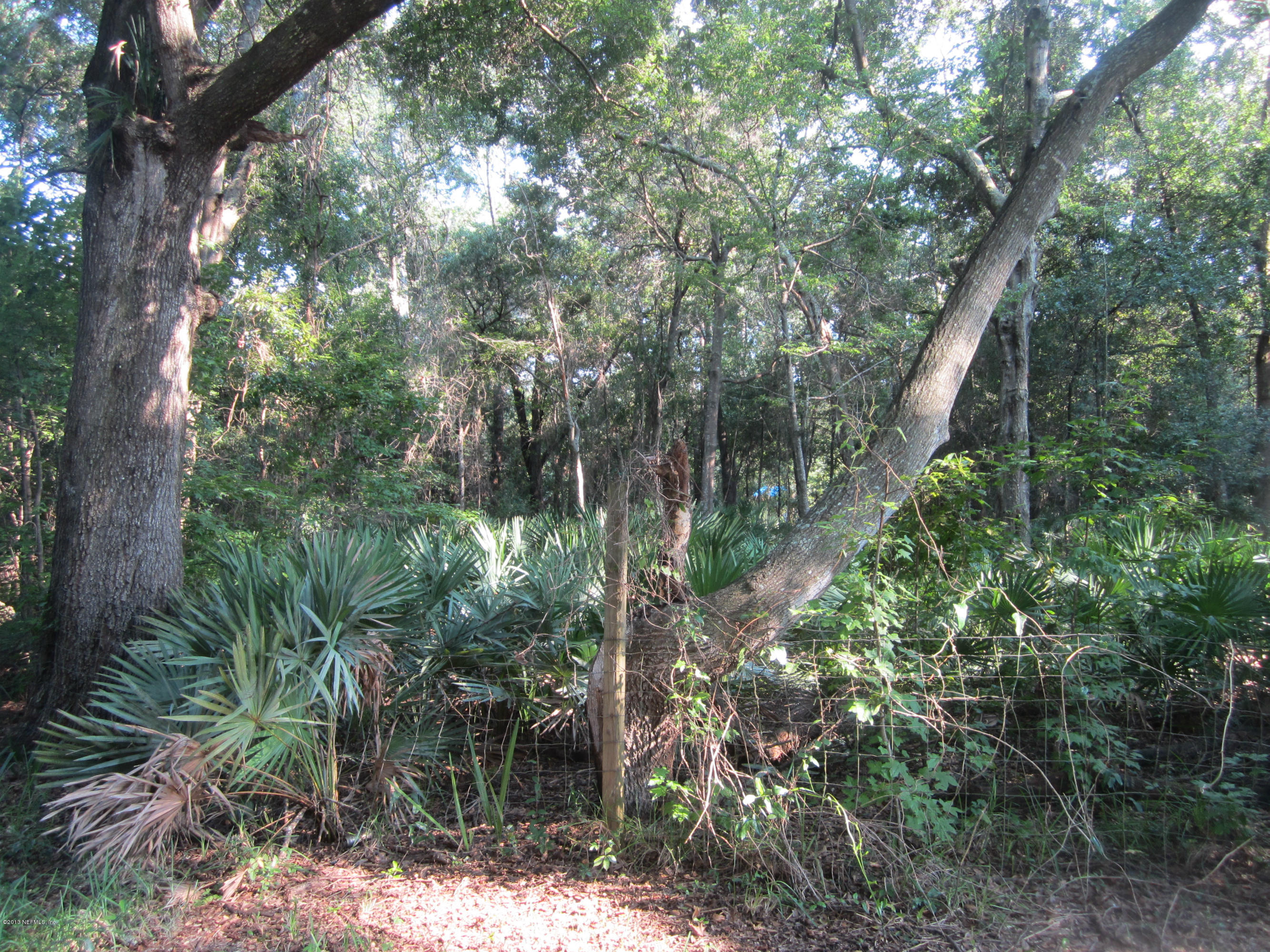 0 CAESAR, JACKSONVILLE, FLORIDA 32233, ,Vacant land,For sale,CAESAR,930083