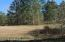 5544 CARTER SPENCER RD, MIDDLEBURG, FL 32068
