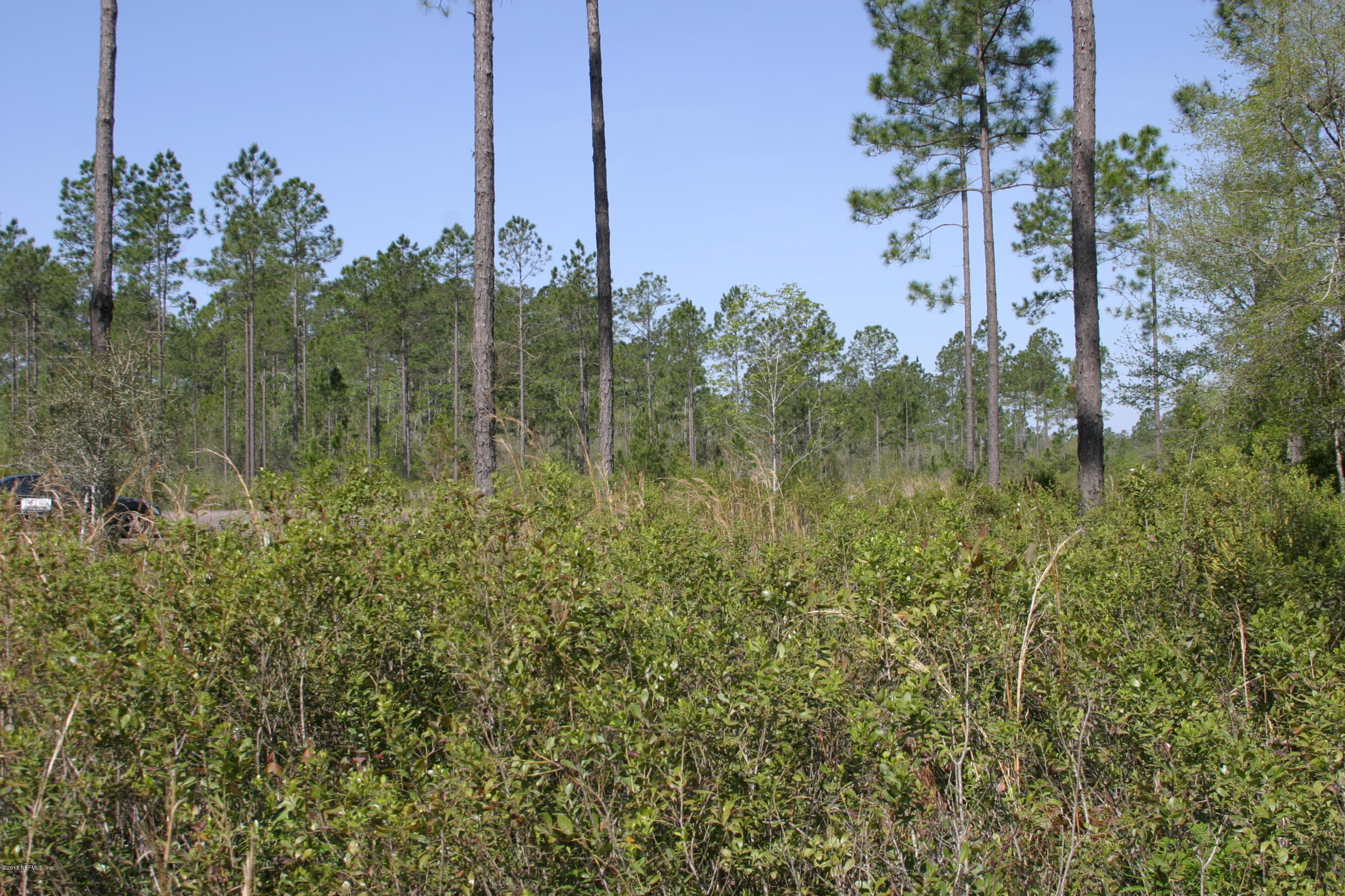 14449 CUTTER, BRYCEVILLE, FLORIDA 32009, ,Vacant land,For sale,CUTTER,931913