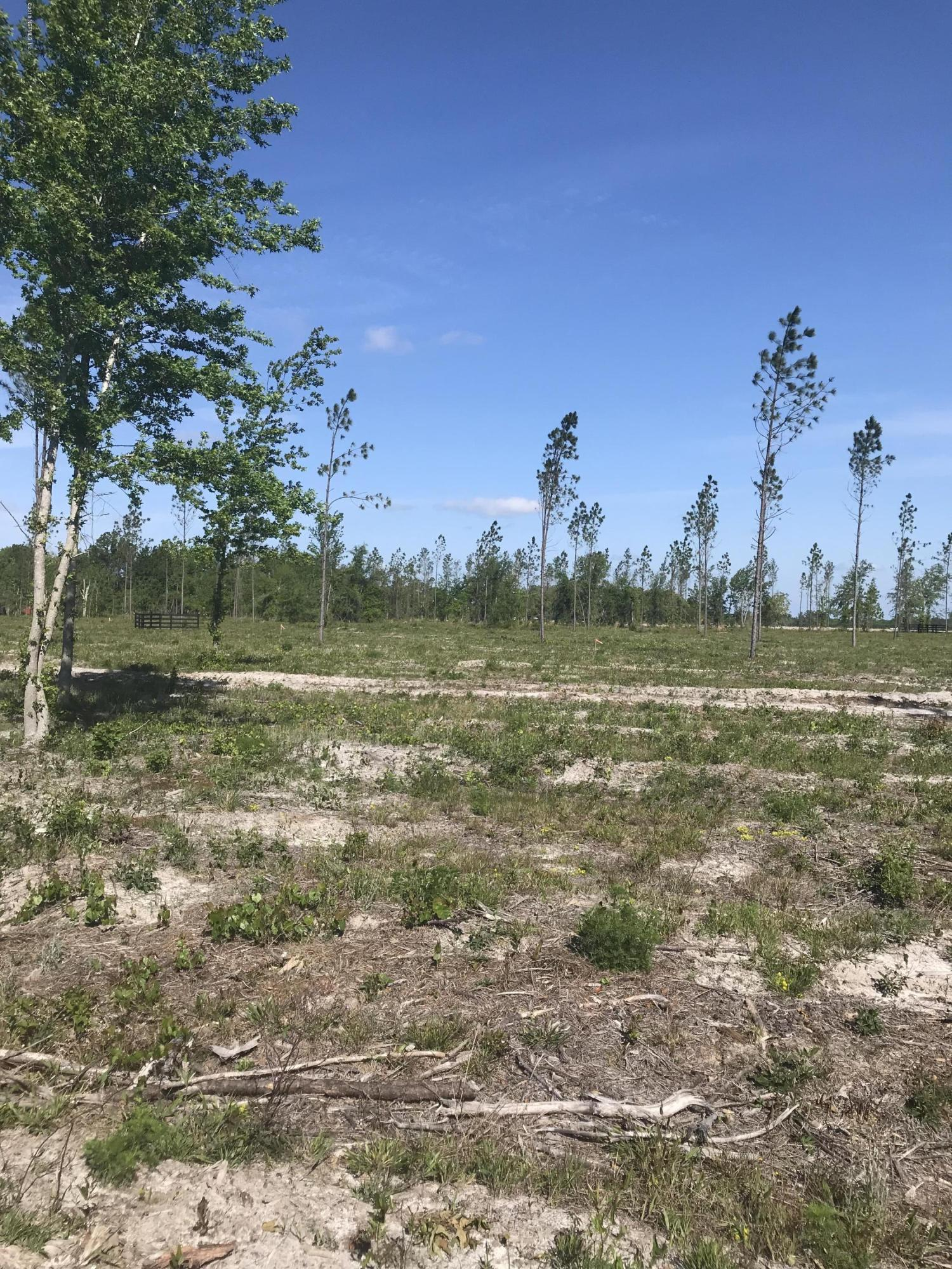 0 CO RD 121 LOT 3, HILLIARD, FLORIDA 32046, ,Vacant land,For sale,CO RD 121 LOT 3,932538