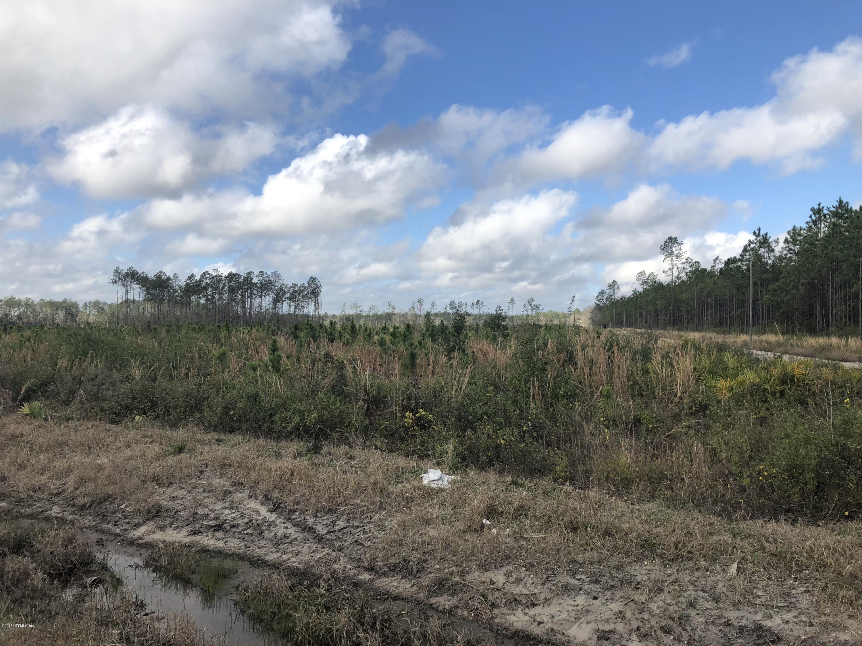 15499 CO RD 121, BRYCEVILLE, FLORIDA 32009, ,Vacant land,For sale,CO RD 121,932299