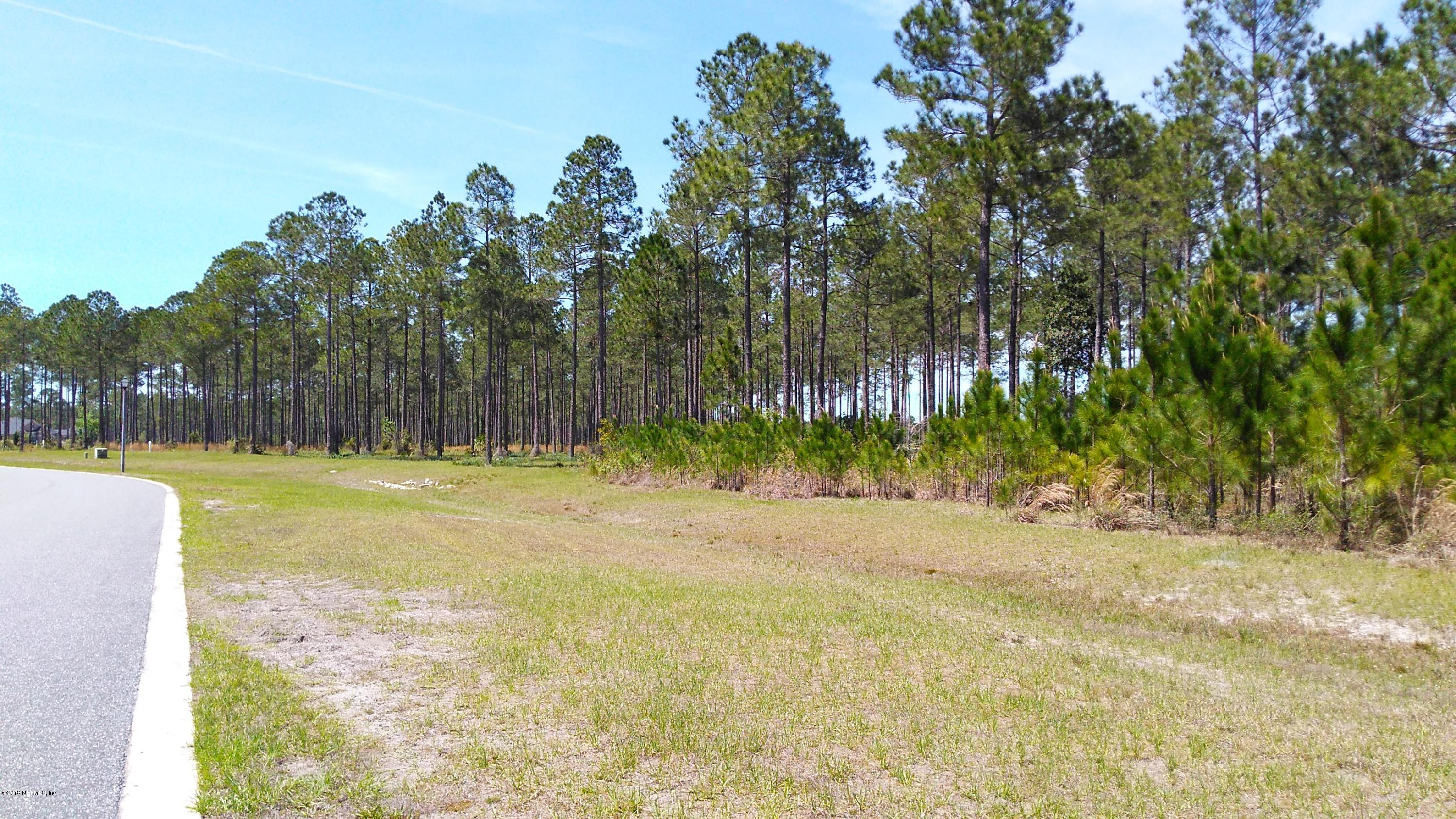 10107 HUNTERS CHASE, JACKSONVILLE, FLORIDA 32219, ,Vacant land,For sale,HUNTERS CHASE,932326