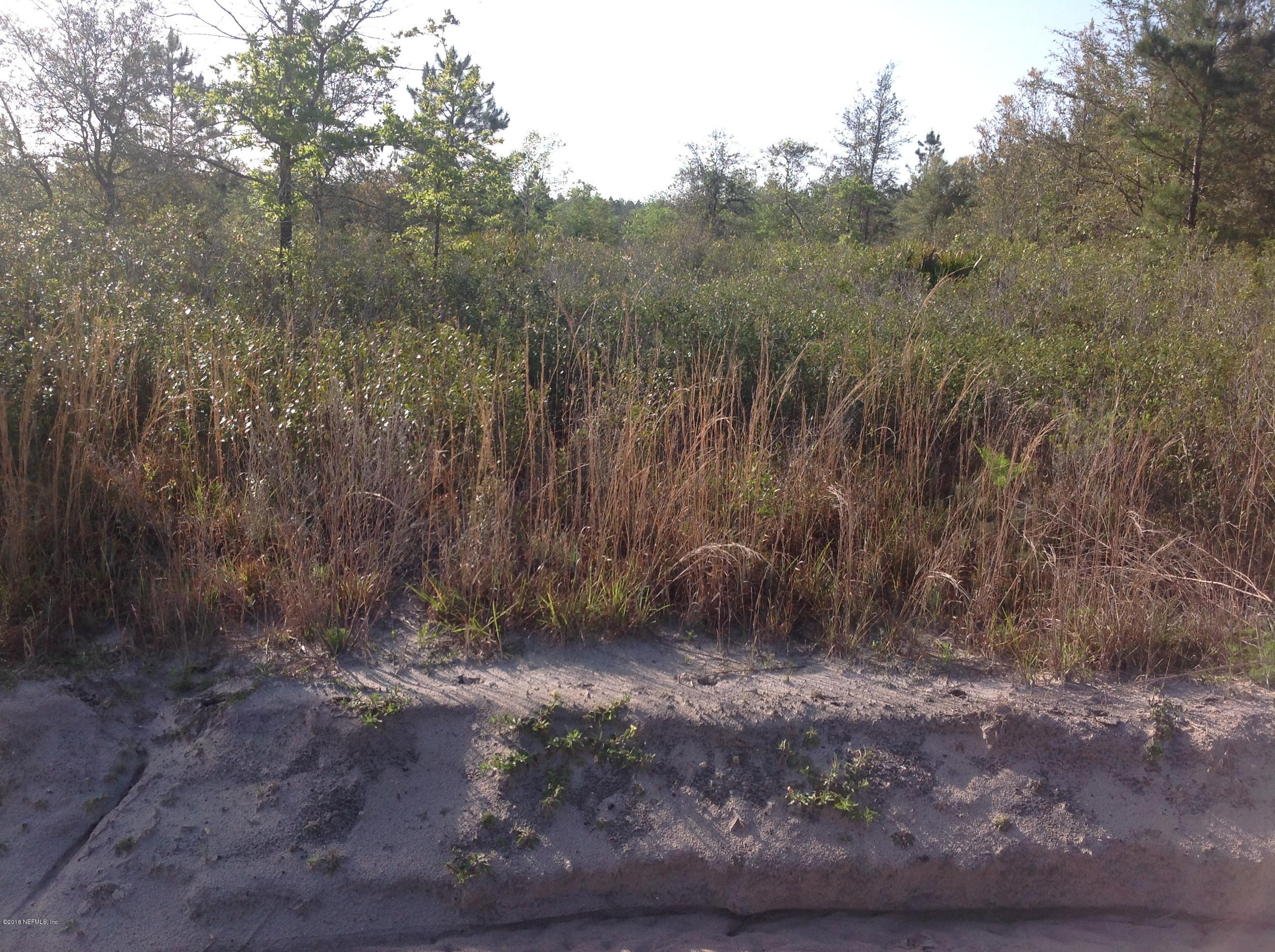0 TURNER CEMETERY, GLEN ST. MARY, FLORIDA 32040, ,Vacant land,For sale,TURNER CEMETERY,933236