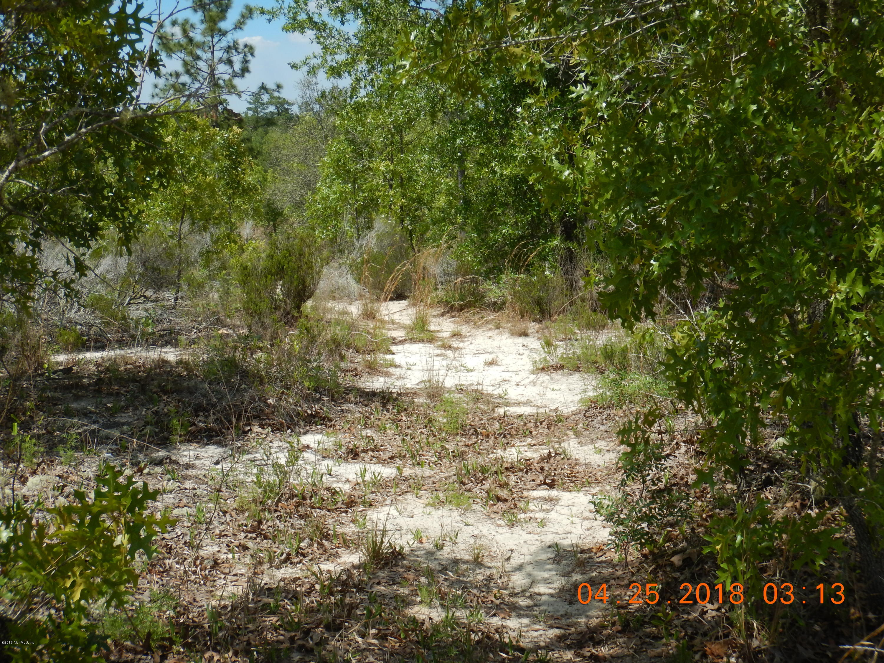 0 MAIN, INTERLACHEN, FLORIDA 32148, ,Vacant land,For sale,MAIN,933871