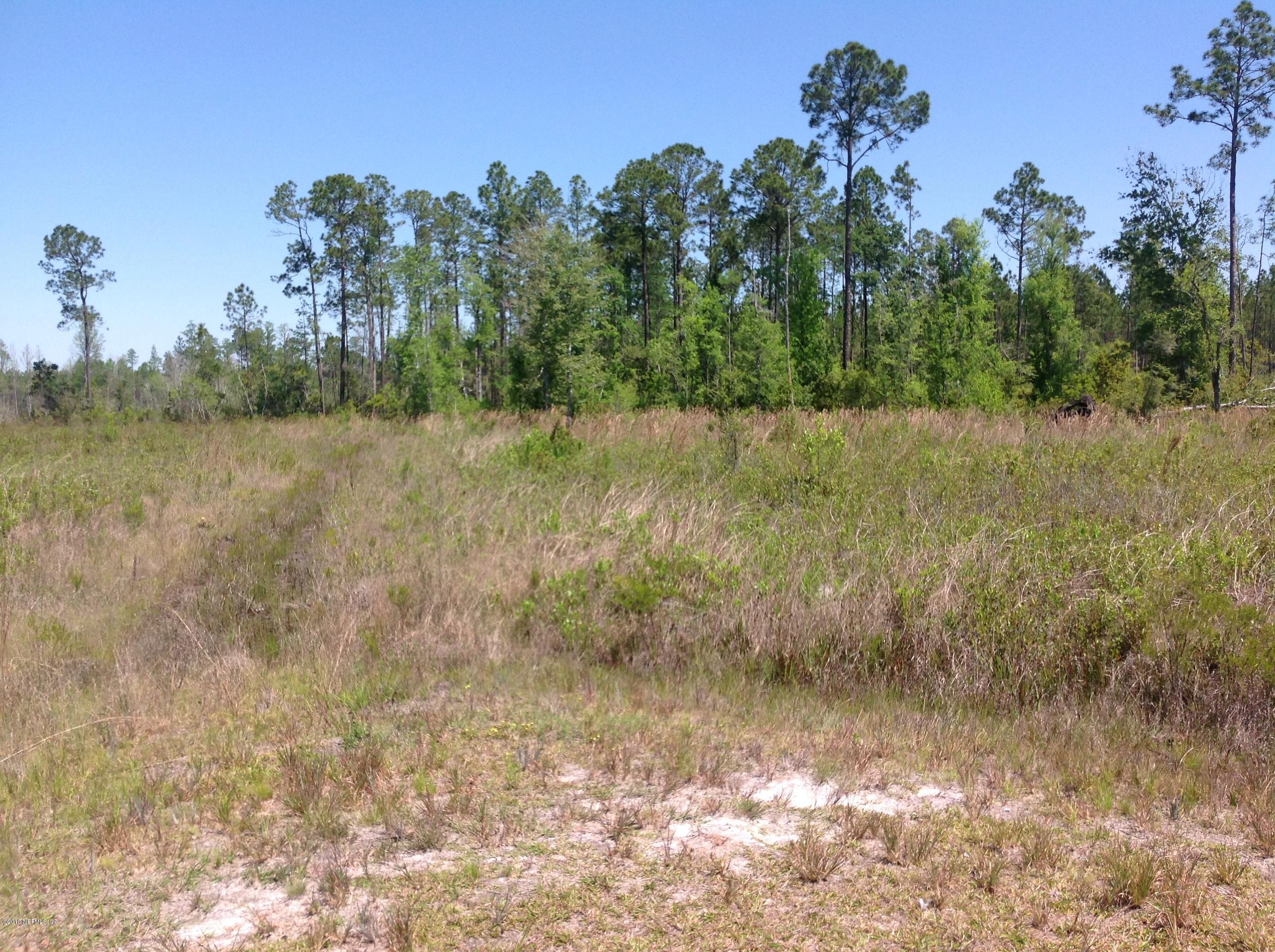 0 CHEYENNE, GLEN ST. MARY, FLORIDA 32040, ,Vacant land,For sale,CHEYENNE,934066