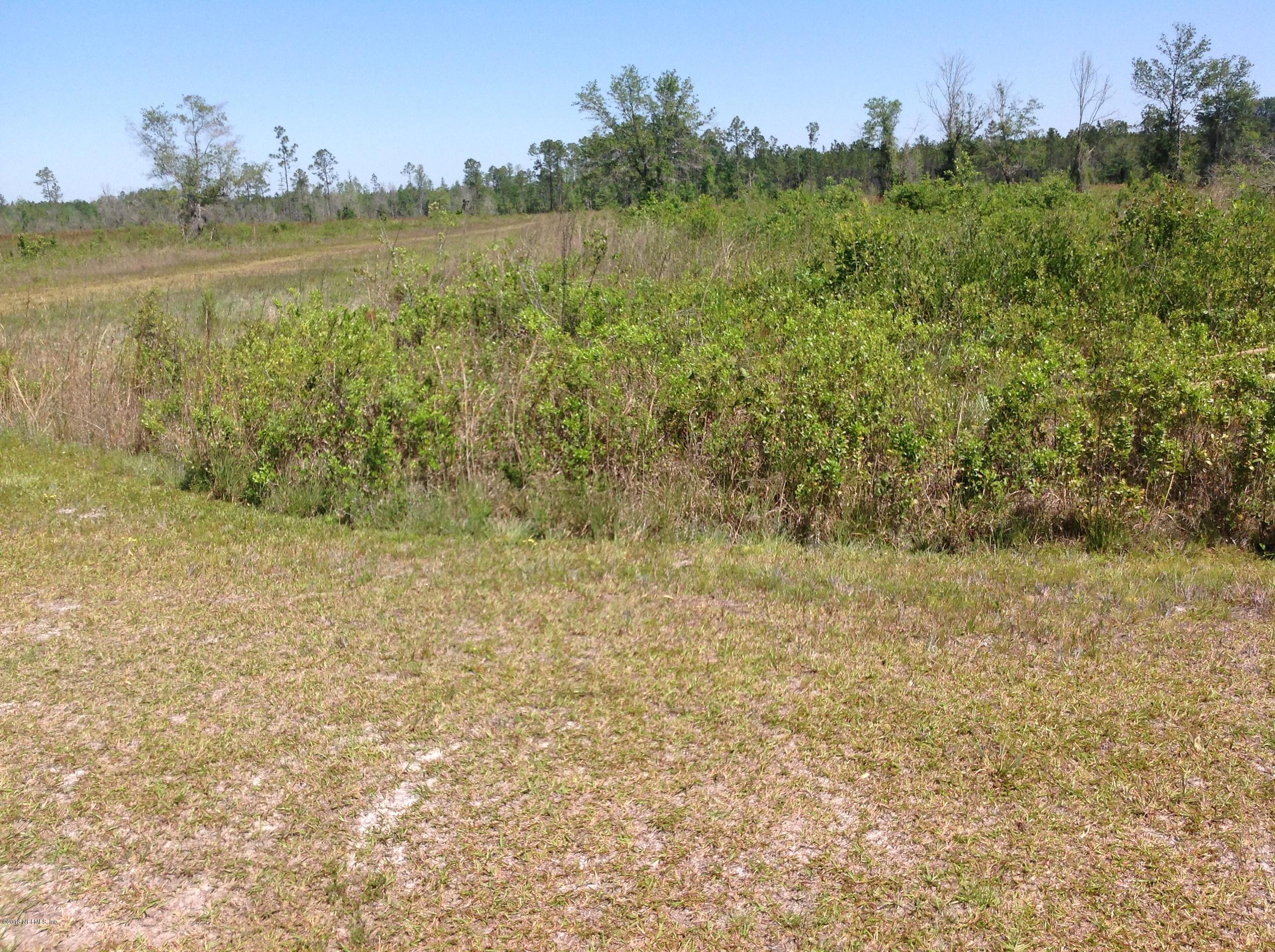 0 CHEYENNE, GLEN ST. MARY, FLORIDA 32040, ,Vacant land,For sale,CHEYENNE,934319