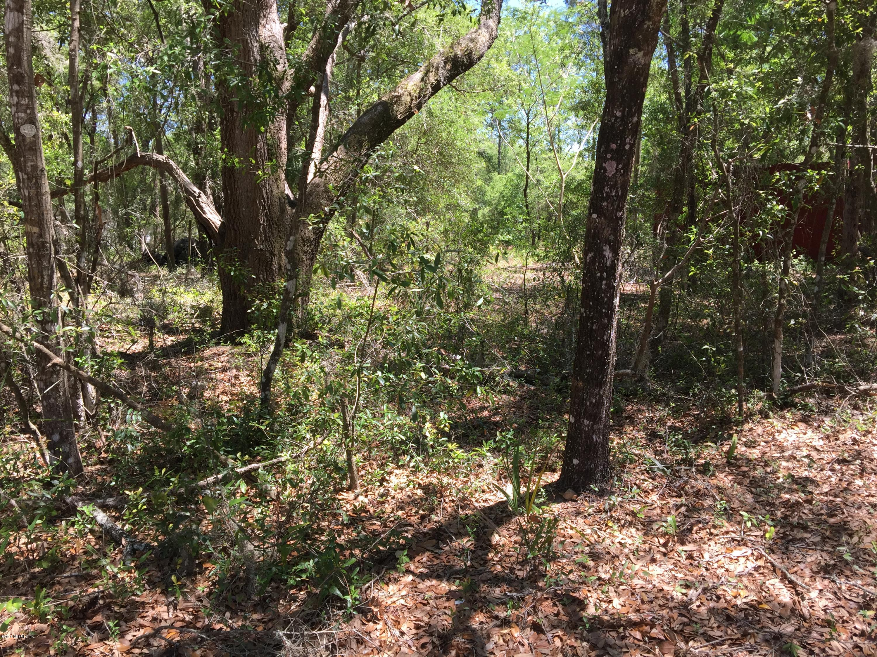 160 SILVER LAKE, HAWTHORNE, FLORIDA 32640, ,Vacant land,For sale,SILVER LAKE,935776