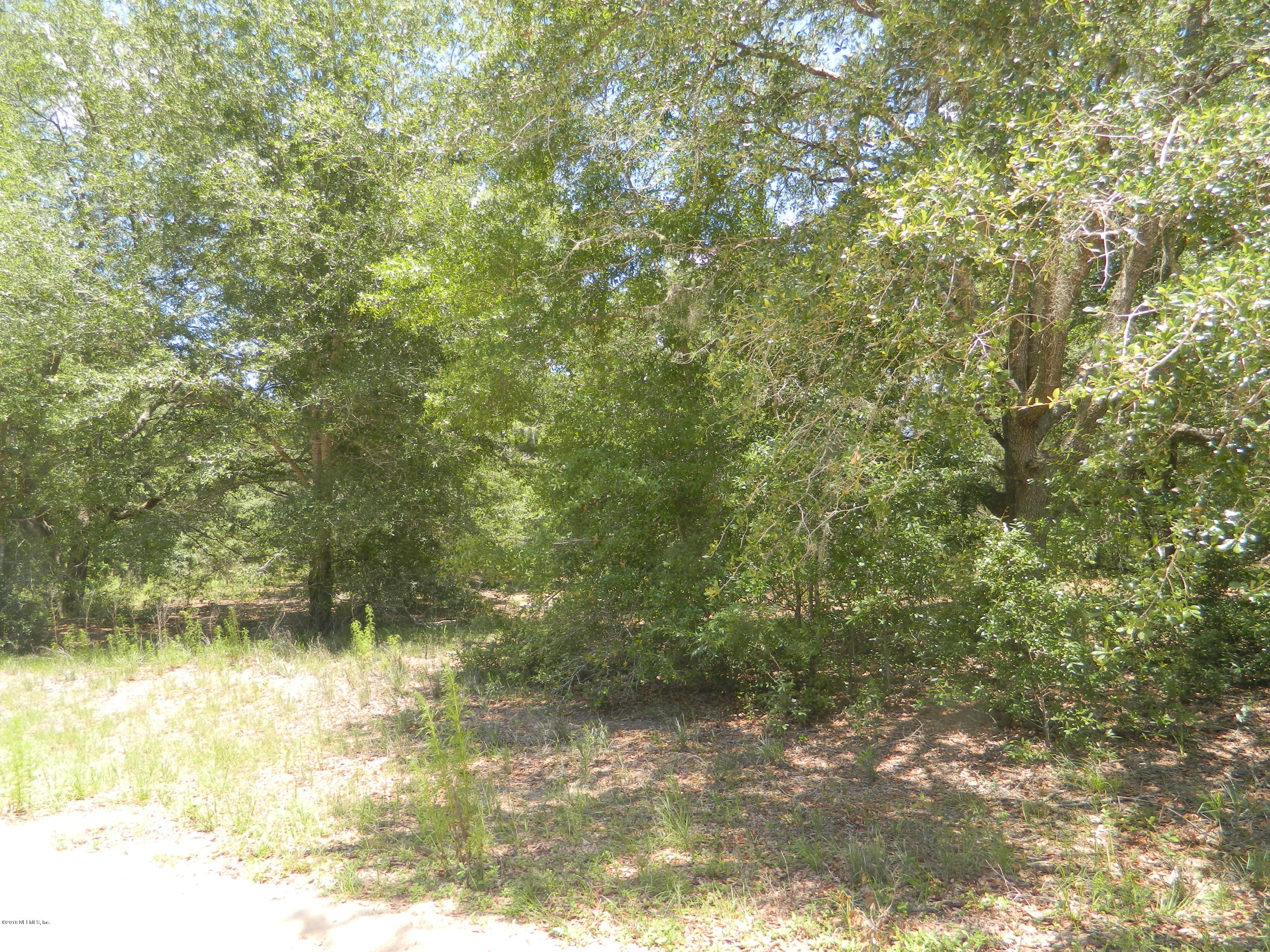 00 DAWN, INTERLACHEN, FLORIDA 32148, ,Vacant land,For sale,DAWN,938208