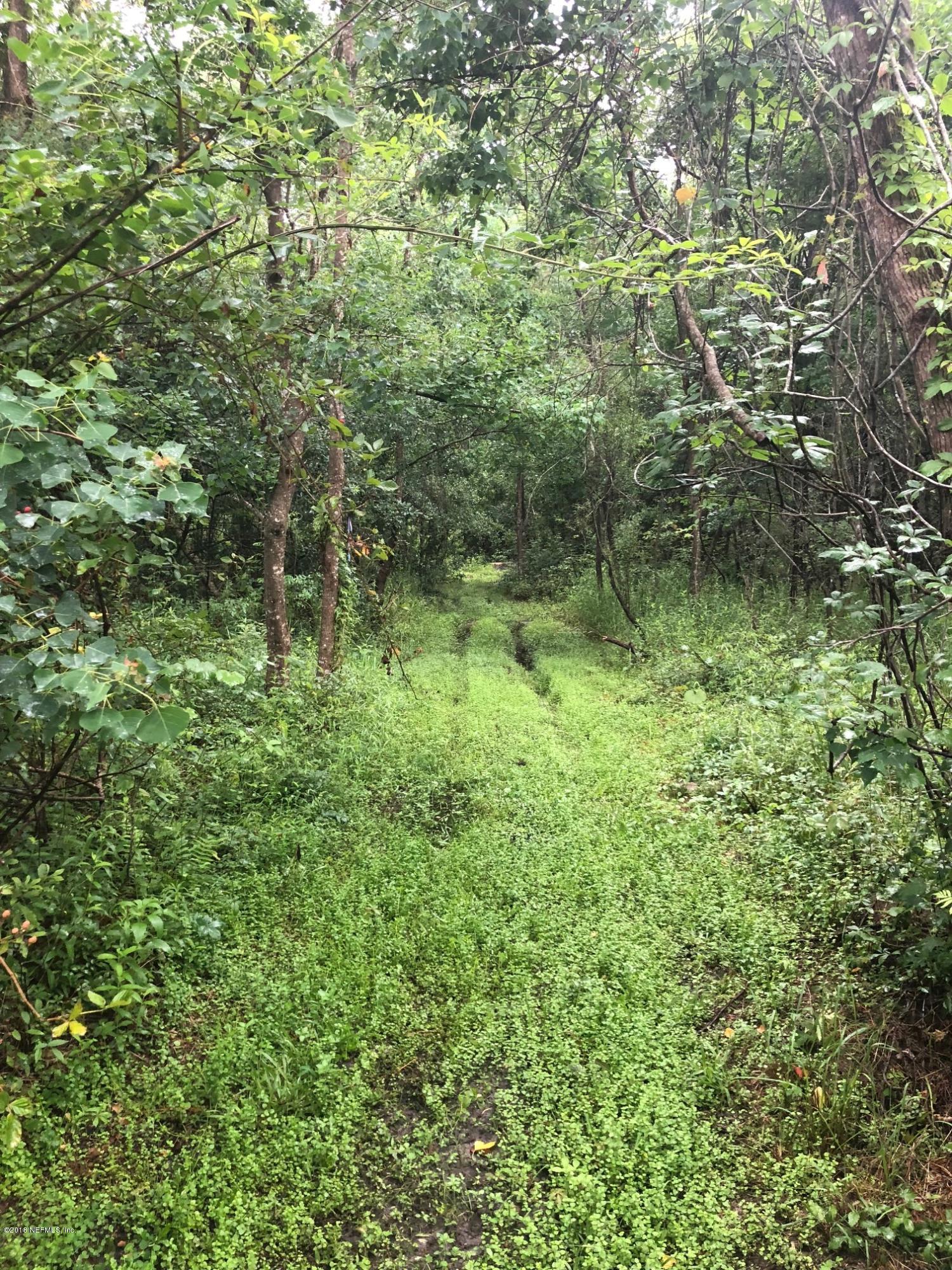 0 SUNRISE FARM, MIDDLEBURG, FLORIDA 32068, ,Vacant land,For sale,SUNRISE FARM,938869