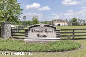 0 DIAMOND RANCH LN, JACKSONVILLE, FL 32234
