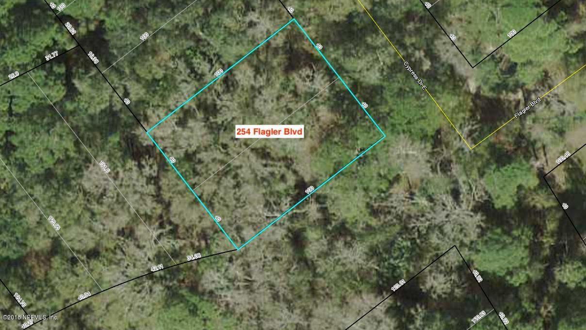 254 FLAGLER, ST AUGUSTINE, FLORIDA 32095, ,Vacant land,For sale,FLAGLER,941039