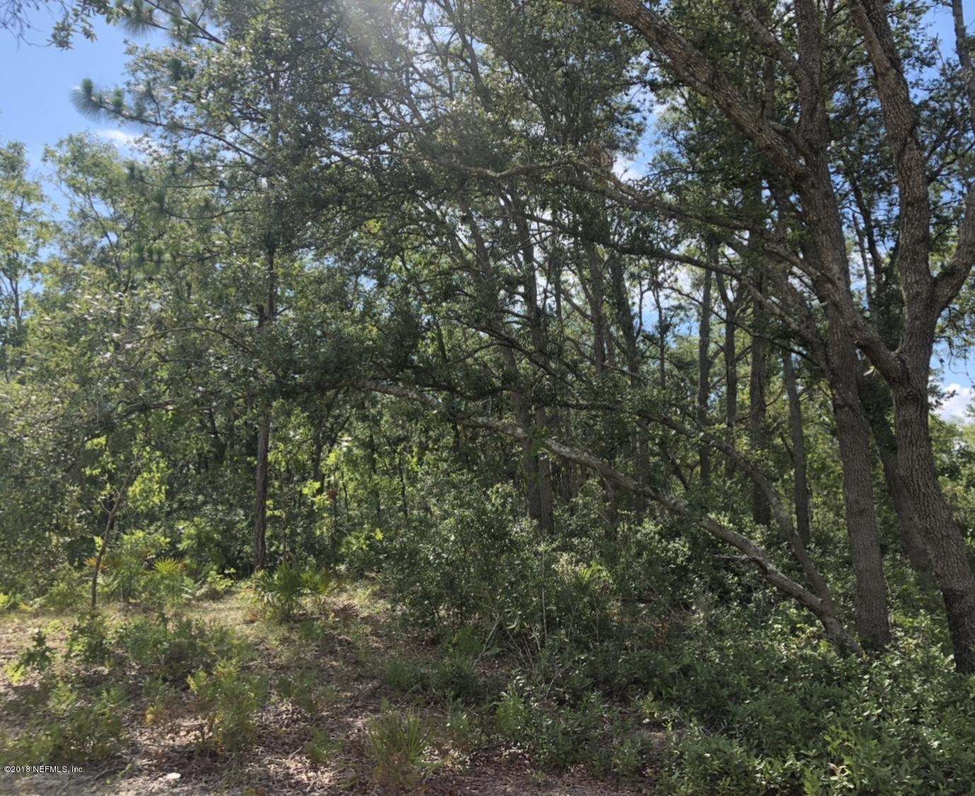 5932 CRANE, KEYSTONE HEIGHTS, FLORIDA 32656, ,Vacant land,For sale,CRANE,941090