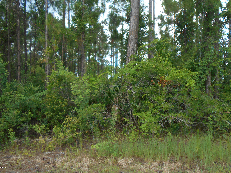 95337 AMELIA NATIONAL, FERNANDINA BEACH, FLORIDA 32034, ,Vacant land,For sale,AMELIA NATIONAL,941477