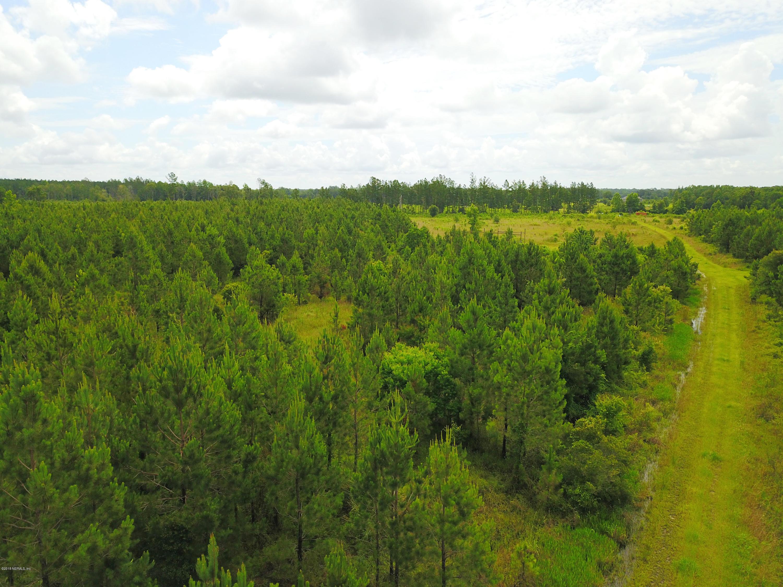 0 WILDLIFE, CALLAHAN, FLORIDA 32011, ,Vacant land,For sale,WILDLIFE,942147