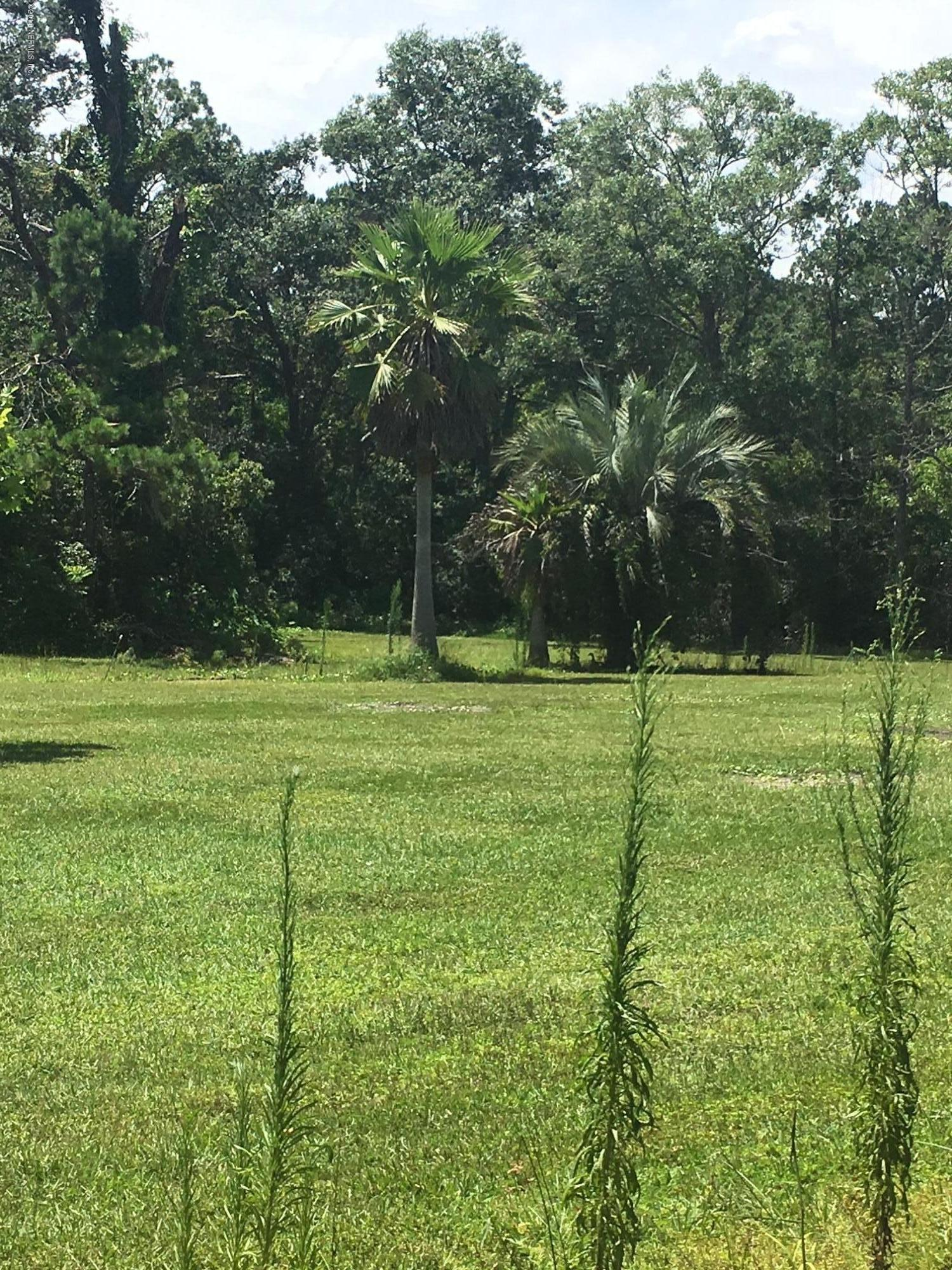 2758 COUNTRY 220, MIDDLEBURG, FLORIDA 32068, ,Vacant land,For sale,COUNTRY 220,943426