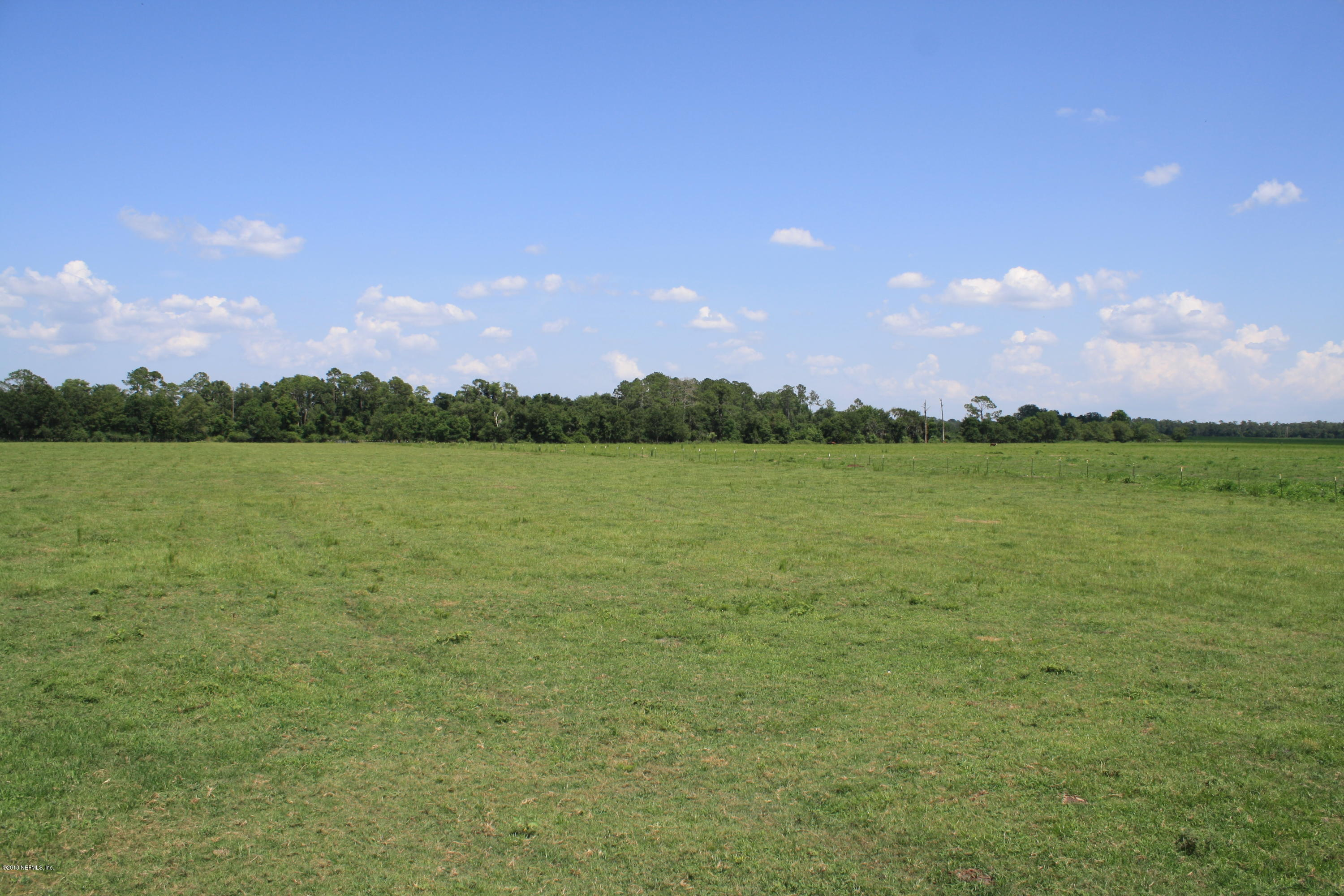 00 WRIGHTS DAIRY, CALLAHAN, FLORIDA 32011, ,Vacant land,For sale,WRIGHTS DAIRY,944131