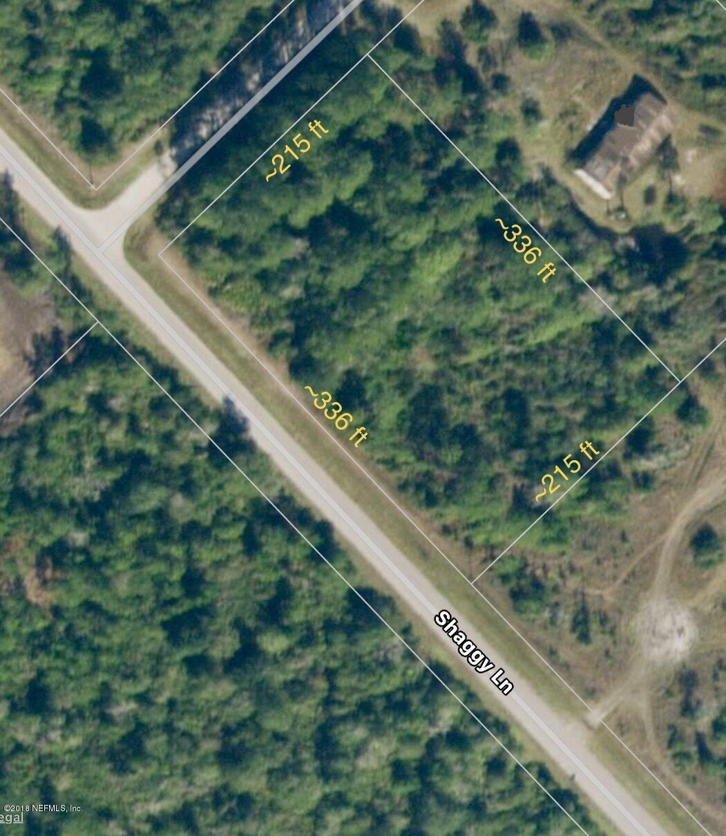 110 SHAGGY, PALATKA, FLORIDA 32177, ,Vacant land,For sale,SHAGGY,946914