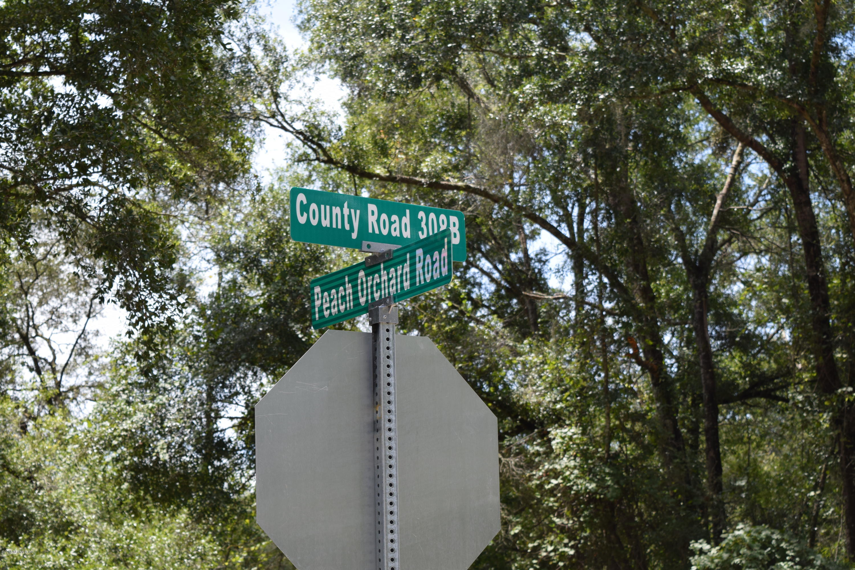 103 ORANGE, POMONA PARK, FLORIDA 32181, ,Vacant land,For sale,ORANGE,951613