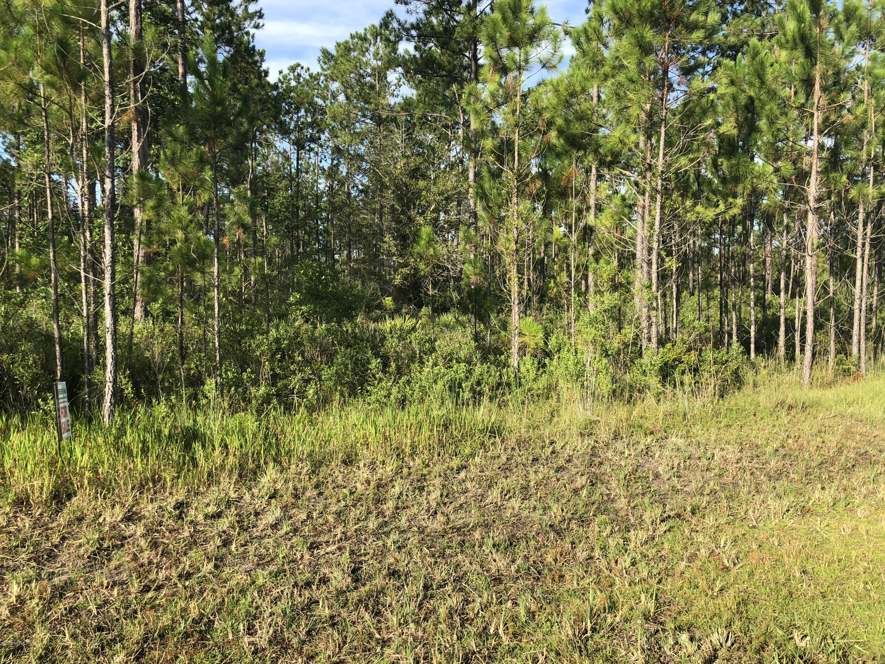 34249 STEEPLE CHASE, CALLAHAN, FLORIDA 32011, ,Vacant land,For sale,STEEPLE CHASE,952674