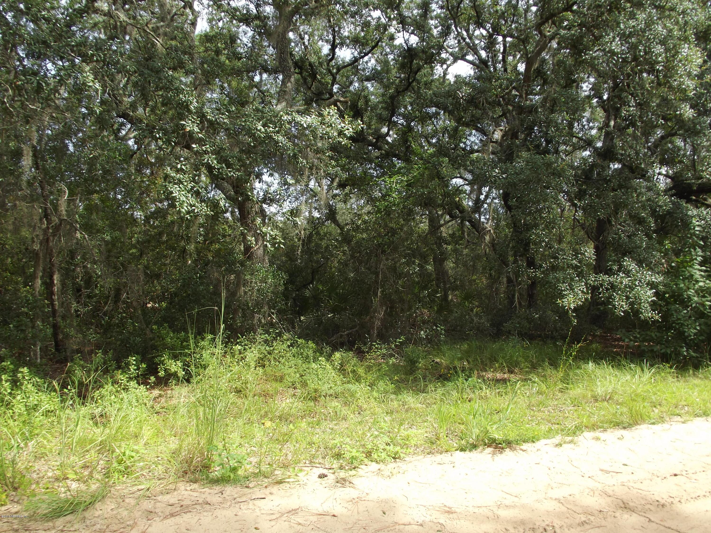 130 BREAM, INTERLACHEN, FLORIDA 32148, ,Vacant land,For sale,BREAM,952523