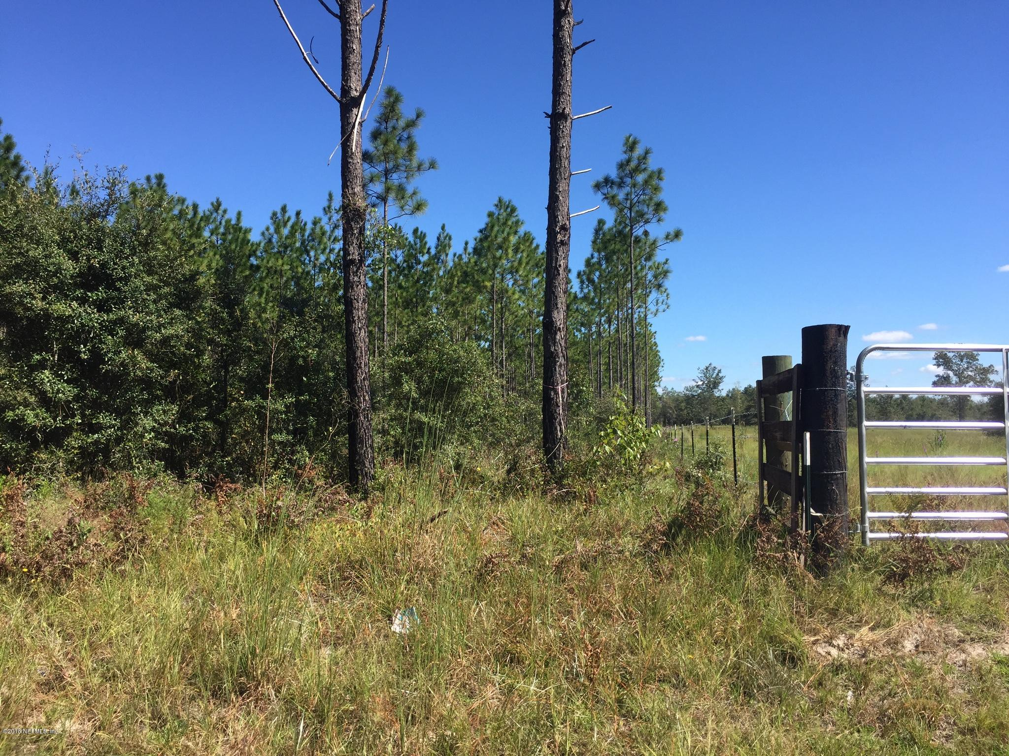 0 COUNTY ROAD 121, HILLIARD, FLORIDA 32046, ,Vacant land,For sale,COUNTY ROAD 121,953672