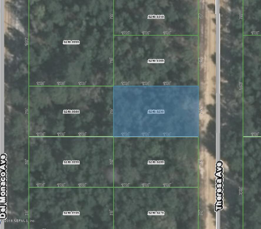 0000000 THERESA, INTERLACHEN, FLORIDA 32148, ,Vacant land,For sale,THERESA,953770