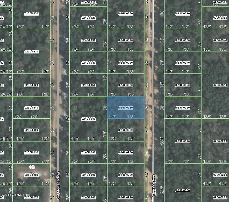000 THERESA, INTERLACHEN, FLORIDA 32148, ,Vacant land,For sale,THERESA,953763