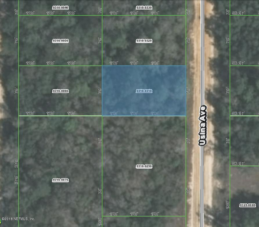 0 USINA, INTERLACHEN, FLORIDA 32148, ,Vacant land,For sale,USINA,953757
