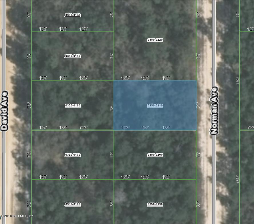 000 NORMAN, INTERLACHEN, FLORIDA 32148, ,Vacant land,For sale,NORMAN,953762