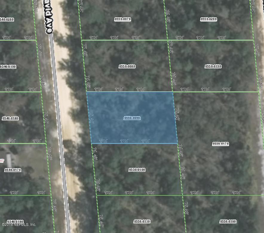 0550-0090 DAVID, INTERLACHEN, FLORIDA 32148, ,Vacant land,For sale,DAVID,953968