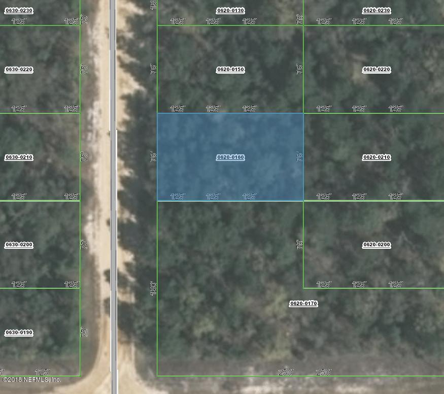0620-0160 DAVID, INTERLACHEN, FLORIDA 32148, ,Vacant land,For sale,DAVID,953971