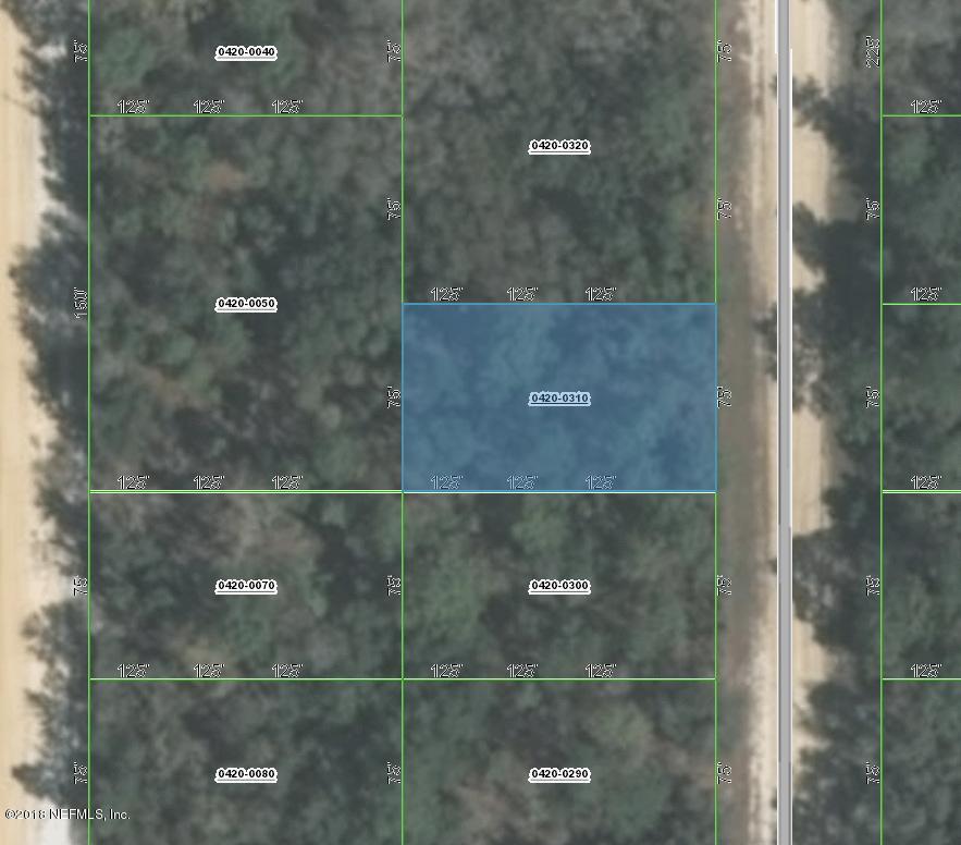 0420-0310 NORMAN, INTERLACHEN, FLORIDA 32148, ,Vacant land,For sale,NORMAN,953961