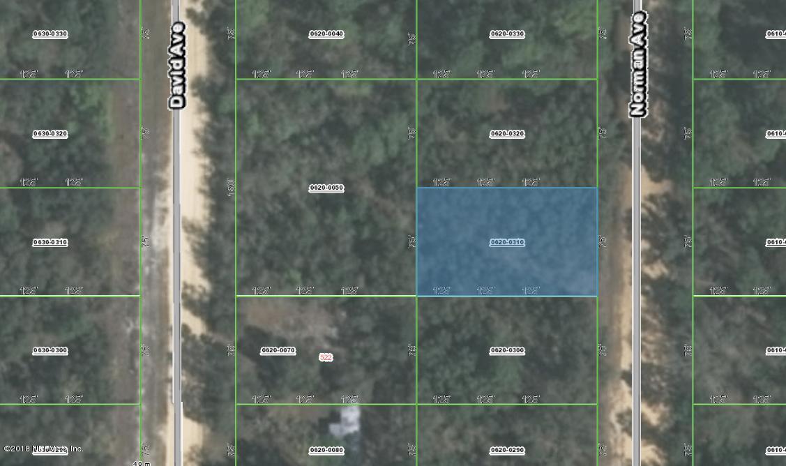 0620-0310 NORMAN, INTERLACHEN, FLORIDA 32148, ,Vacant land,For sale,NORMAN,953973