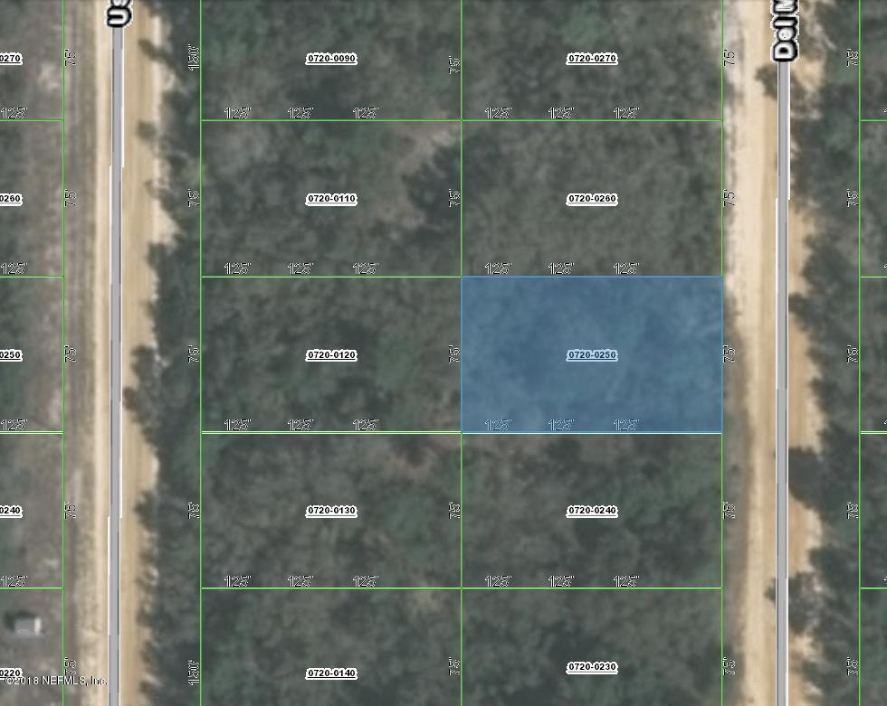 0720-0250 DEL MONACO, INTERLACHEN, FLORIDA 32148, ,Vacant land,For sale,DEL MONACO,954209