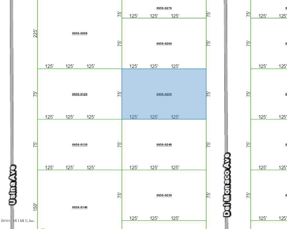 0650-0250 DEL MONACO, INTERLACHEN, FLORIDA 32148, ,Vacant land,For sale,DEL MONACO,954197