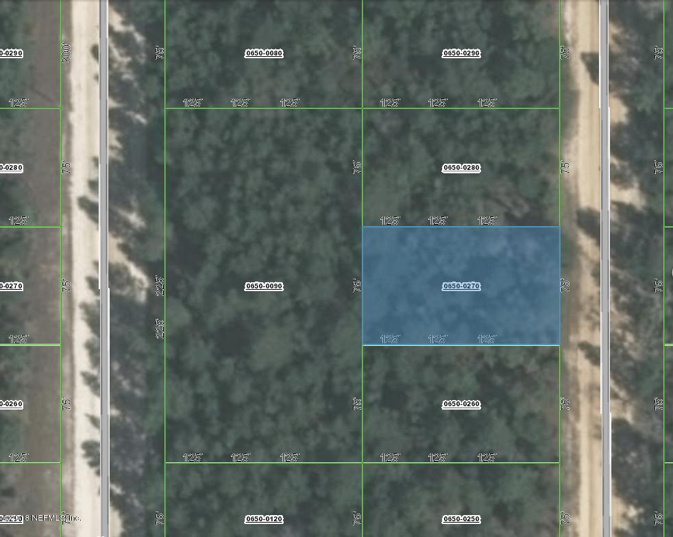 0650-0270 DEL MONACO, INTERLACHEN, FLORIDA 32148, ,Vacant land,For sale,DEL MONACO,954199