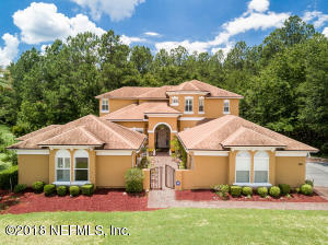 Photo of 1555 Green Moss Ln, Orange Park, Fl 32065 - MLS# 958206