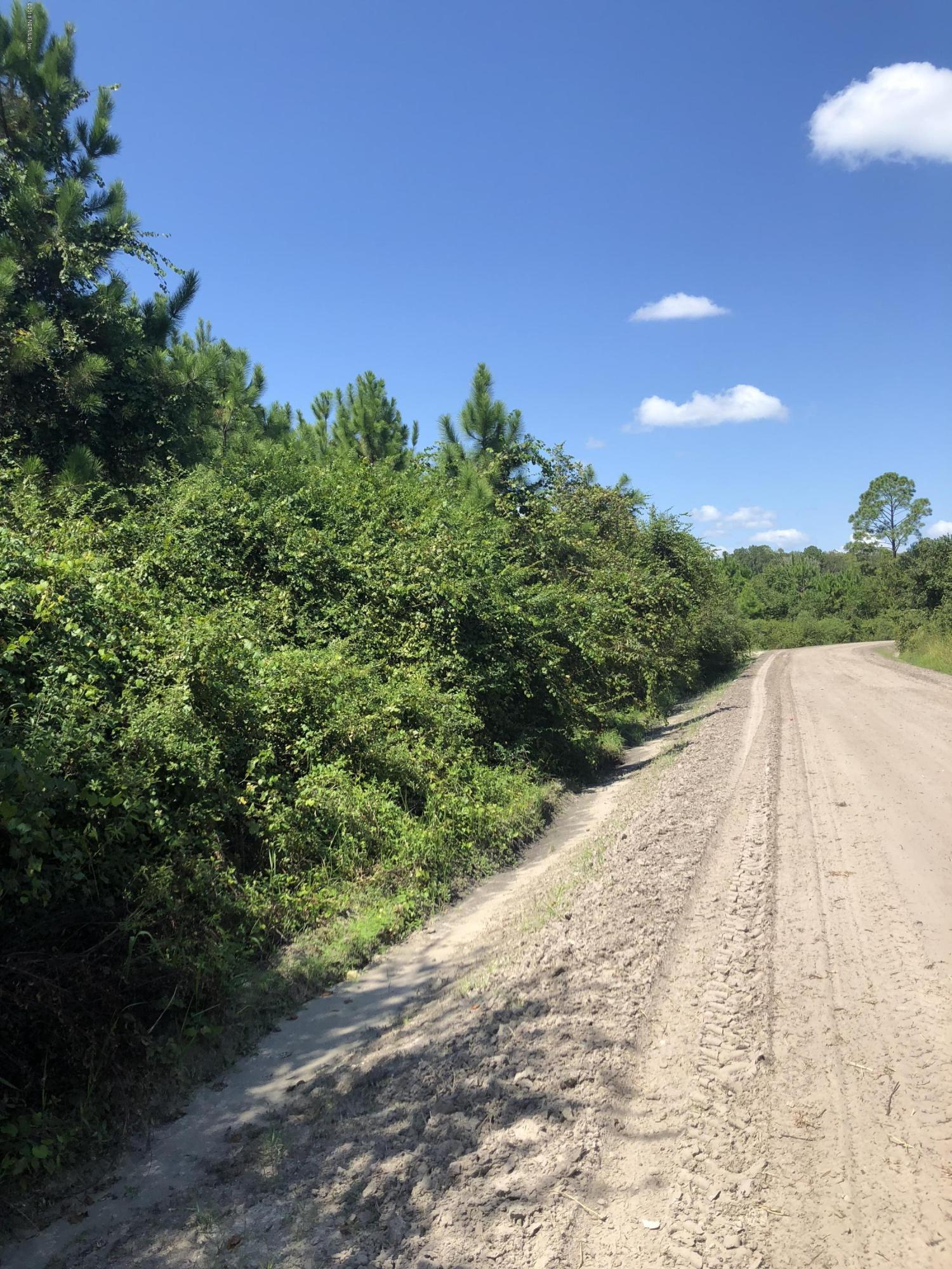 19020 71, STARKE, FLORIDA 32091, ,Vacant land,For sale,71,957469
