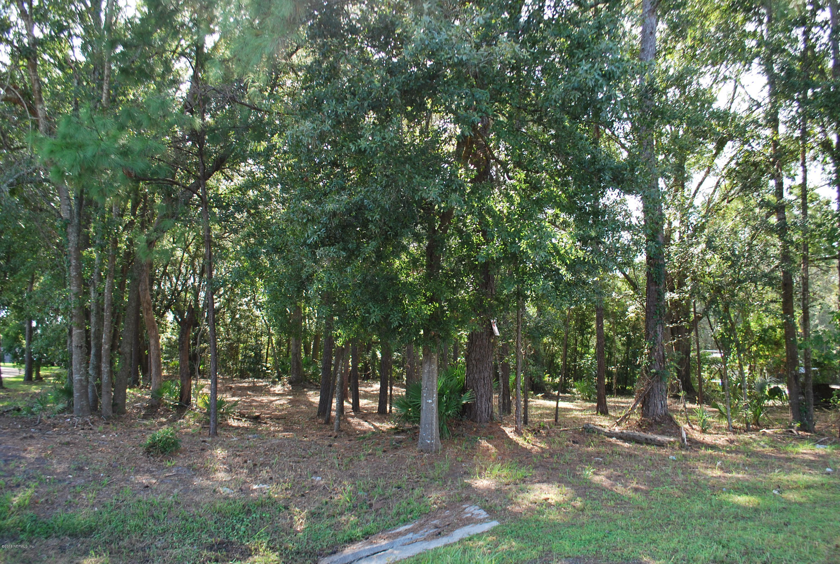 0 NEW KINGS, JACKSONVILLE, FLORIDA 32219, ,Vacant land,For sale,NEW KINGS,959304