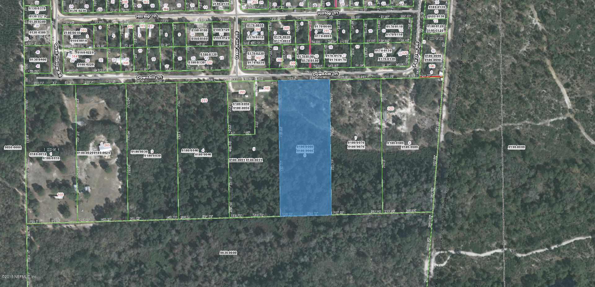 307 DOWNHILL, SATSUMA, FLORIDA 32189, ,Vacant land,For sale,DOWNHILL,959195