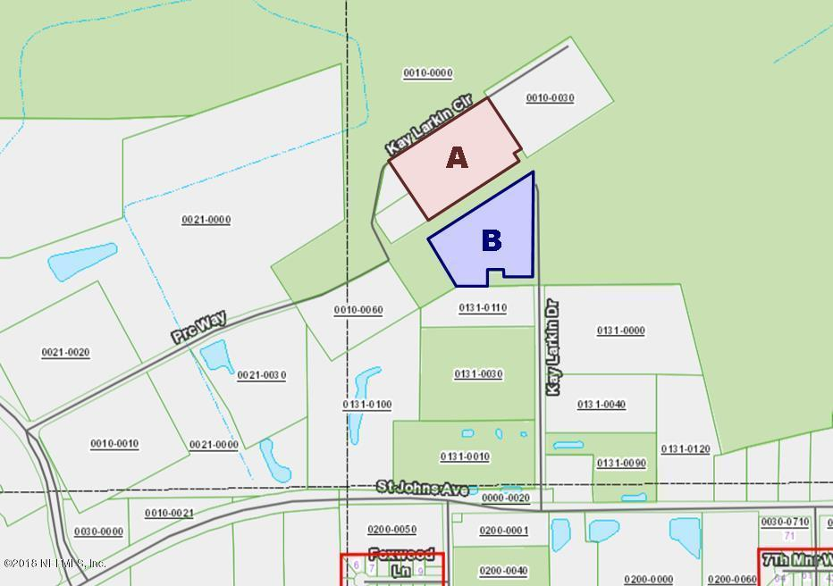 (PARCEL B) KAY LARKIN, PALATKA, FLORIDA 32177, ,Commercial,For sale,KAY LARKIN,962740