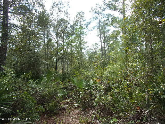TBD FAWN, PALATKA, FLORIDA 32177, ,Vacant land,For sale,FAWN,874841