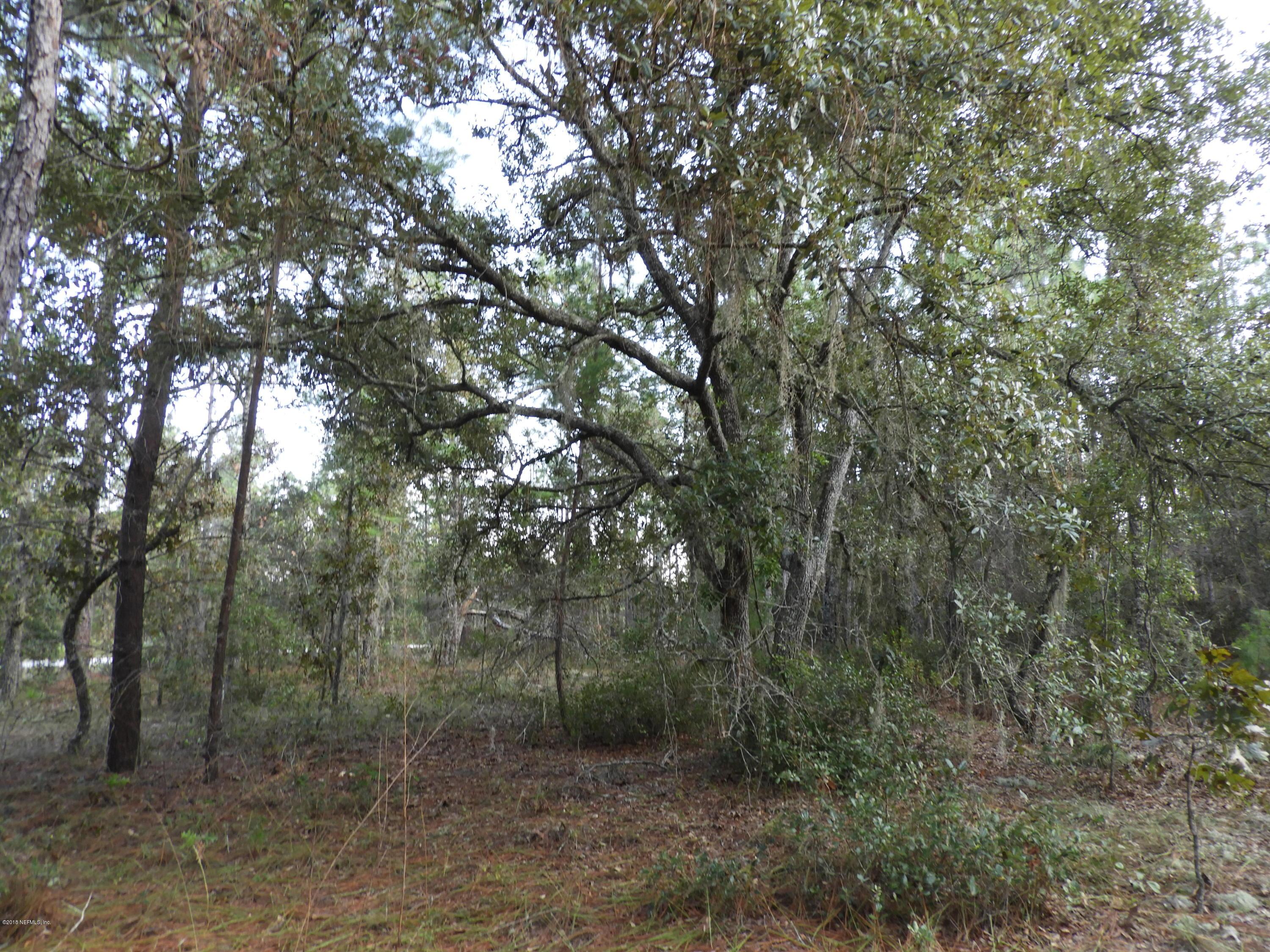 7464 BIENVILLE, KEYSTONE HEIGHTS, FLORIDA 32656, ,Vacant land,For sale,BIENVILLE,964668