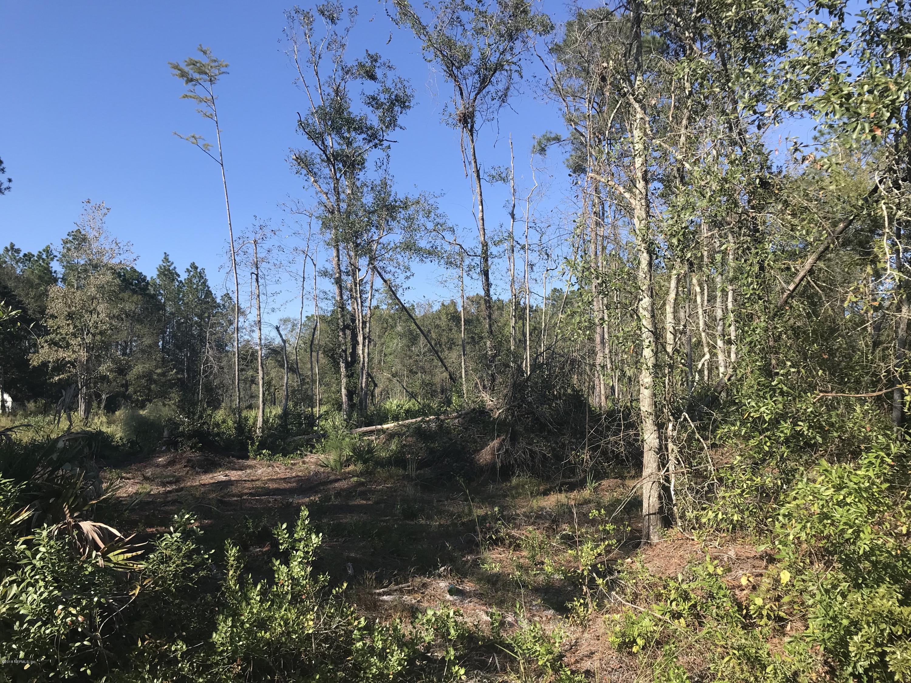 0 OLD PLANK, JACKSONVILLE, FLORIDA 32220, ,Vacant land,For sale,OLD PLANK,965107