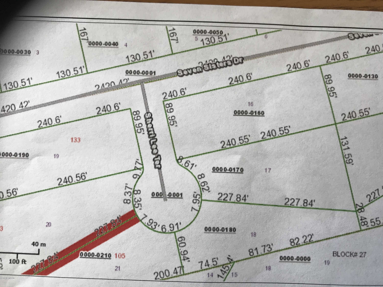 104 SHERRI LEE, SATSUMA, FLORIDA 32189, ,Vacant land,For sale,SHERRI LEE,964989