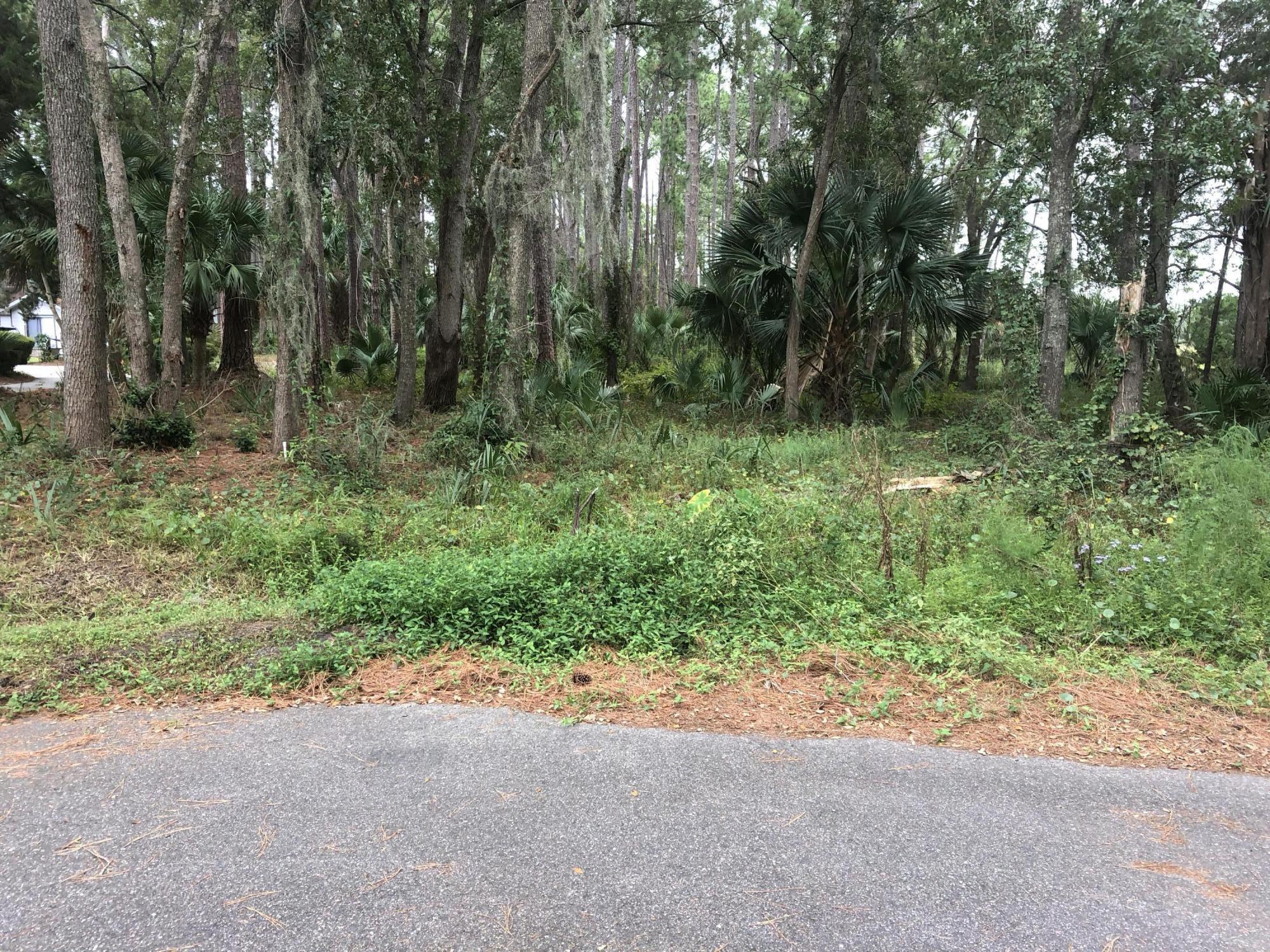 212-0010 CRANE, FERNANDINA BEACH, FLORIDA 32034, ,Vacant land,For sale,CRANE,966679