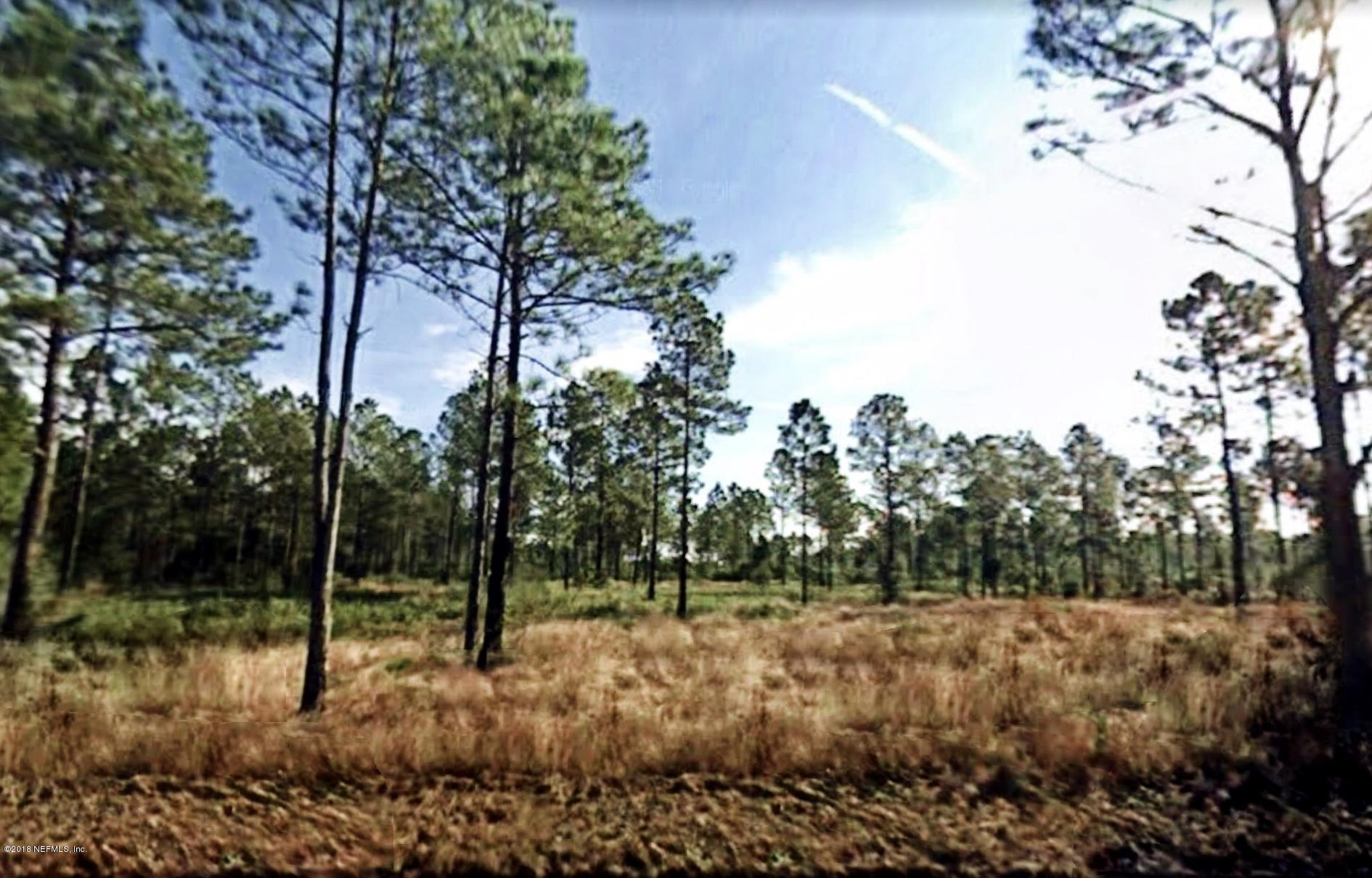 10540 DILLON, HASTINGS, FLORIDA 32145, ,Vacant land,For sale,DILLON,966581
